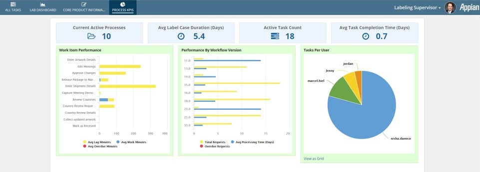 appian labeling process and materials management process kpis report dashboard